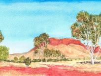 Namatjiras-tree-near-Alice-Springs