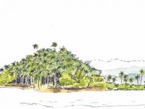 Savusavu-Bay