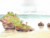 Bulikula-Savusavu-Fiji