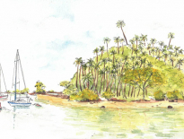 Savusavu-Bay-Fiji