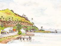 Savusavu town